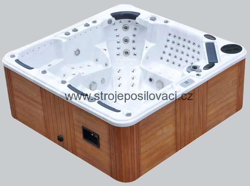 Jacuzzi Tubs Near Me Bathtubs And Showers For Mobile