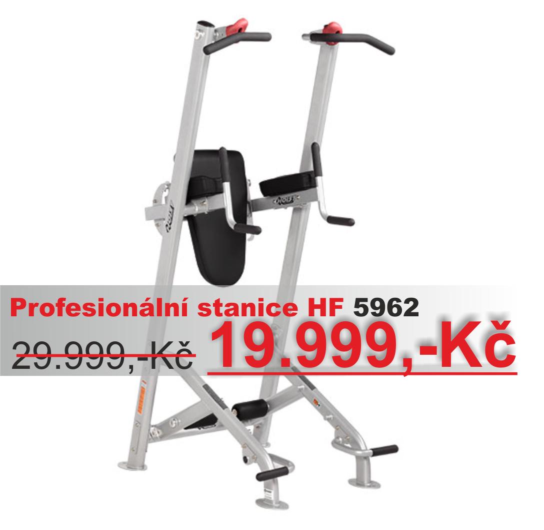 Hrazda na shyby a kliky na bradlech HF-5962 Fitness Tree Platinum HF-5962